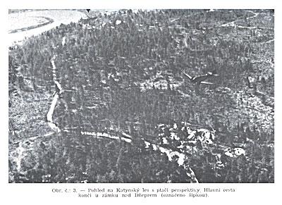 Катынский лес с высоты птичьего полета.