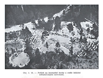 Общий вид на массовые могилы
