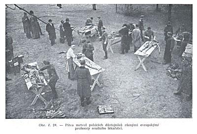 Европейские профессоры судебной медицины делают вскрытие трупов польских офицеров.